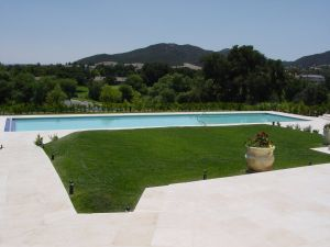 Formal & Grecian Pools #028 by Quality Custom Pools