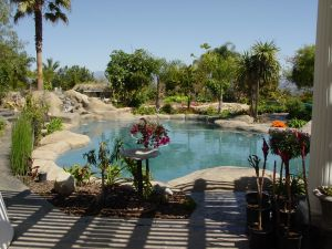 Rock Style Pools #027 by Quality Custom Pools