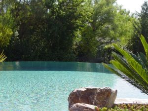 Vanishing Edge Pools #008 by Quality Custom Pools
